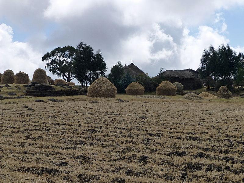 Village_au_centre_de_l'Ethiopie_(2)